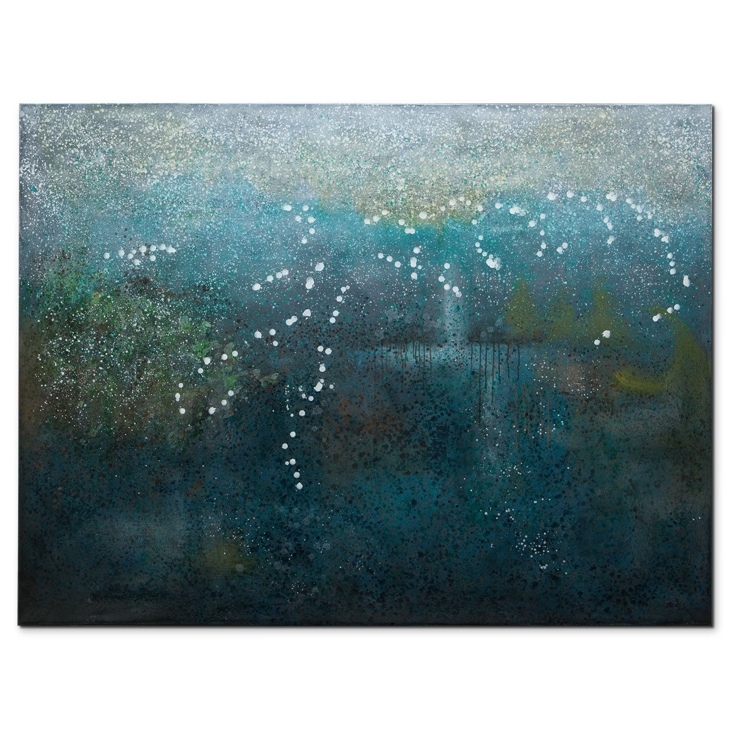 Cloud Forest Canvas Print