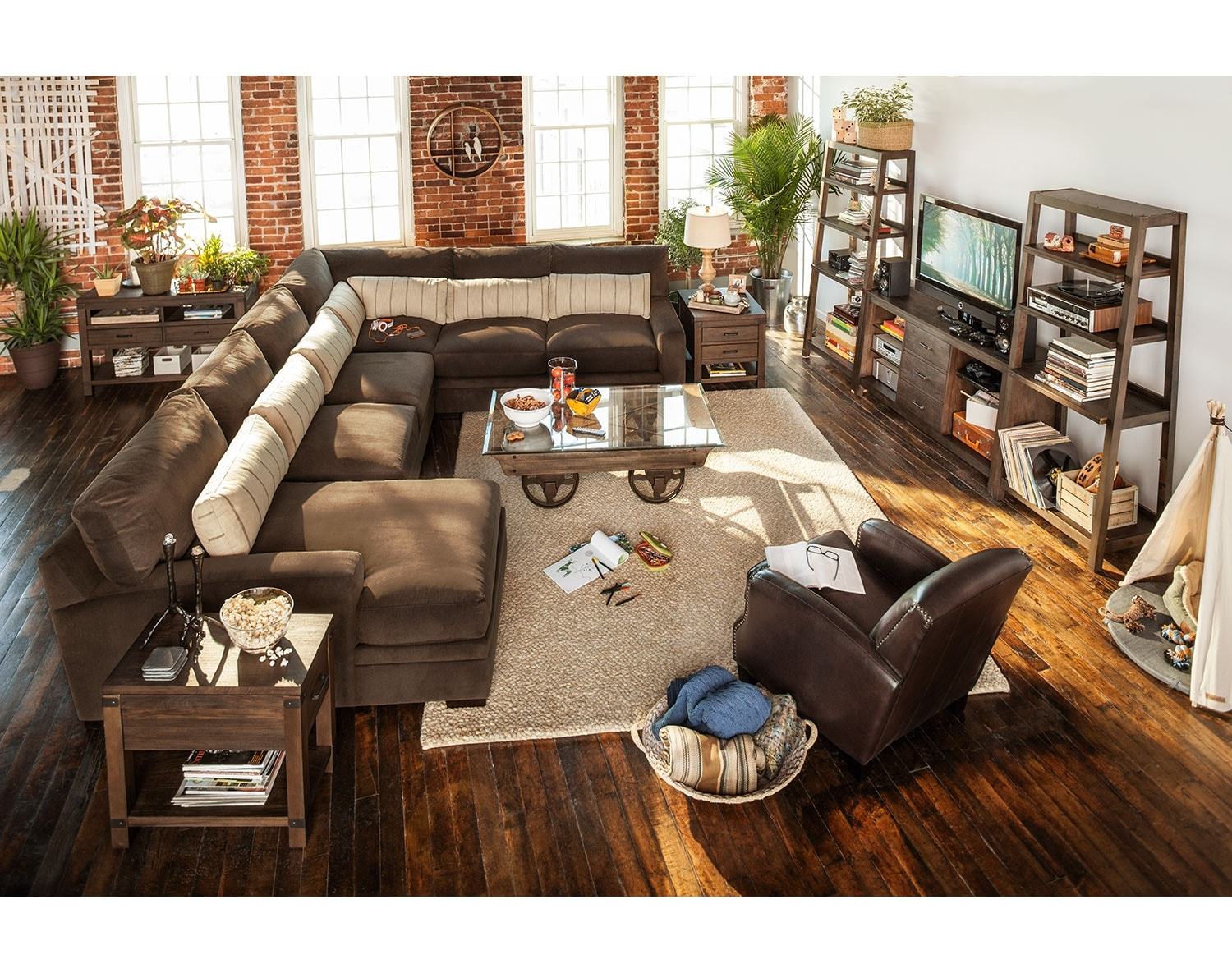 The Ventura Collection - Brown