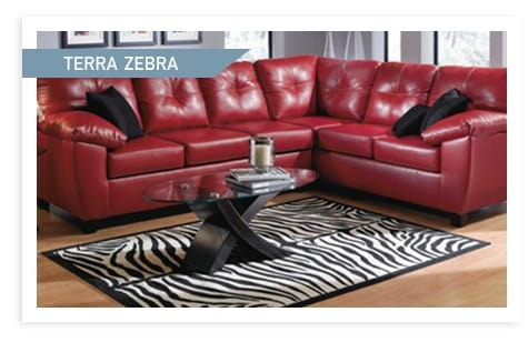 Shop the Terra Zebra Accent Colleciton