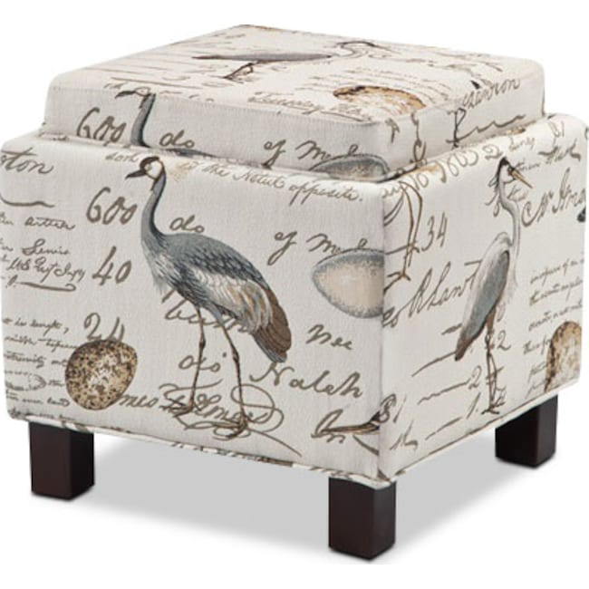 Living Room Furniture - Hayes Storage Ottoman with 2 Pillows - Birds