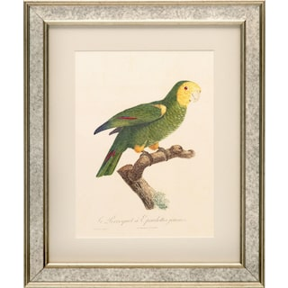 Tropical Bird Framed Print - Green
