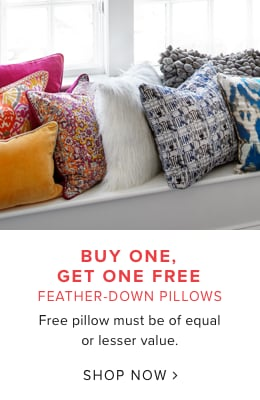 buy one get one free feather-down pillows