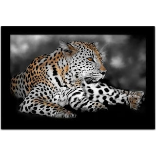 Spotted You Framed Print