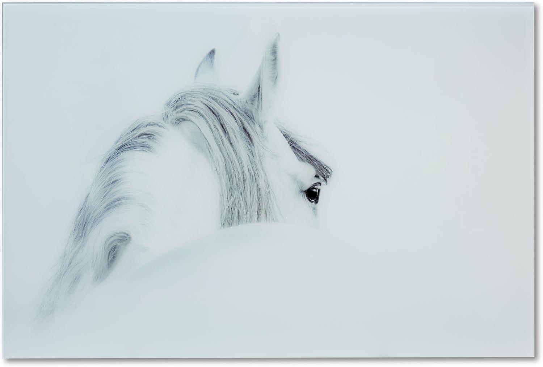 Home Accessories - Blanco Mane Horse Wall Art