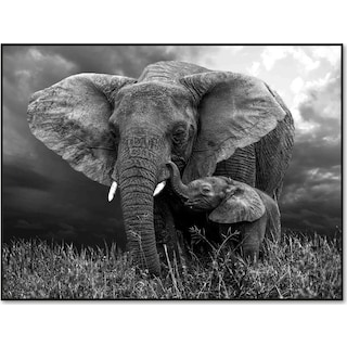 Elephant Mother and Baby Wall Art