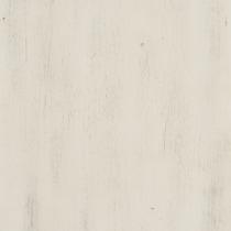 cambridge white curio