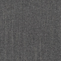 curious charcoal swatch