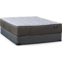 dream serene gray twin mattress foundation set