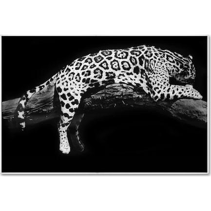 Laying Leopard Wall Art
